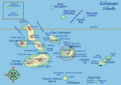 Santa Cruz Islands Map Santa Cruz Island Galapagos   Facts, Climate & Maps