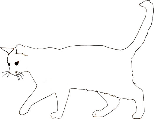 Wild Cat Colouring Page Free