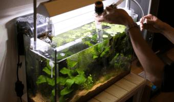 best aquarium vacuum