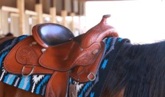 best western saddle