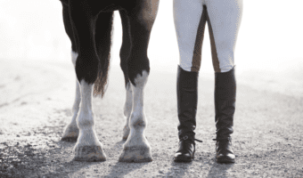 Best Hoof Boots For Horses